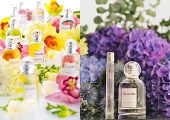 唯有機 - 帶你用香氛找回戀情最純粹的觸動~ 嚴選法國天然香氛品牌 - 日光意境