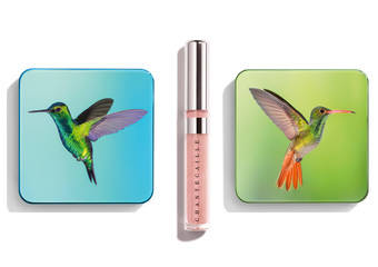 安雅泰勒喬伊X香緹卡 出席電影《艾瑪Emma》首映 春季飛行寶石眼彩展靈氣眼妝 共同捍衛亞馬遜雨林