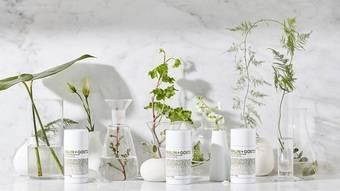 更純淨的清爽選擇「植萃體香膏」,帶給你全然純淨、舒心的嗅覺體驗