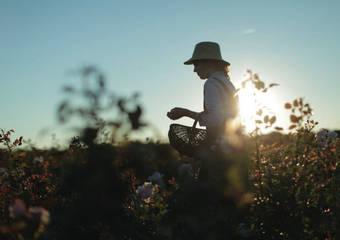 迪奧深耕「永續發展」70年 守護美麗也保護環境,減少地球負擔不遺餘力