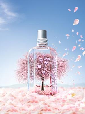 [新品] L'OCCITANE 升級版櫻花香氛系列。感受春日無限美好