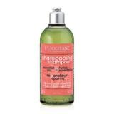 草本修護洗髮乳 Repairing Shampoo for dry & damaged hair