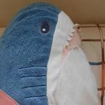 Fish_魚